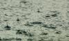 В среду в Ленинградской области возможны дожди