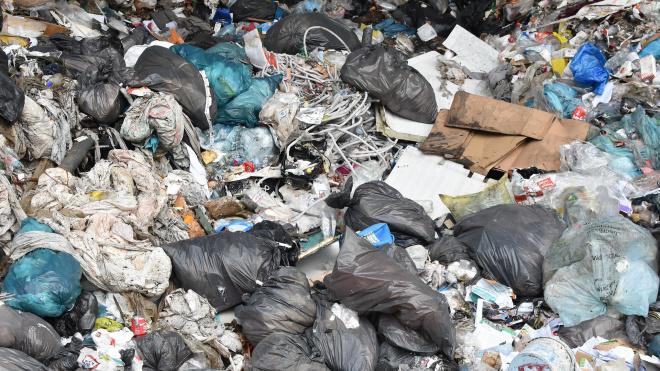 Нелегальные свалки в Ленобласти должны ликвидировать за 60 дней