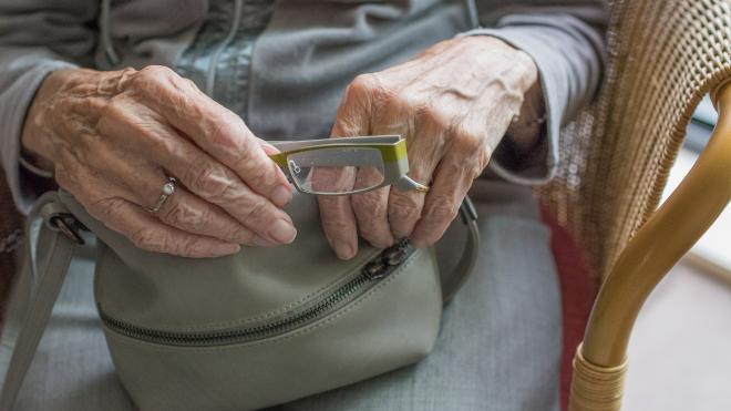 В деревне Старая поймали разбойника, вырвавшего сумку из рук пенсионерки