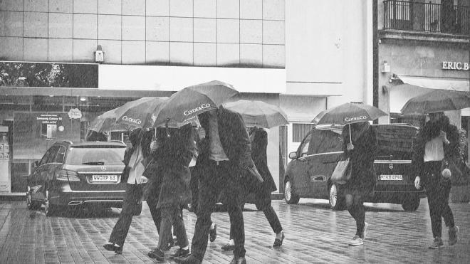Главный синоптик Петербурга предупредил горожан о надвигающемся шторме