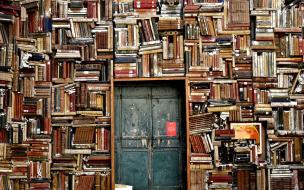 В Петербурге девушка сломала дверь библиотеки из-за ...