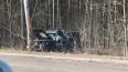 Столкновение с деревом на Приморском шоссе унесло ...
