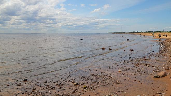 Эксперты назвали причину обмеления Финского залива
