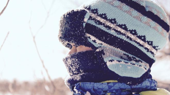 Водитель автобуса №12 в Выборгском районе отказался везти школьника, оставив ребенка на морозе