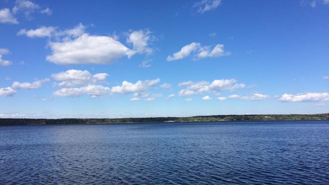 Температура воздуха в Ленобласти 13 июня поднимется до +22 градусов
