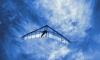 Крушение дельтаплана в Подмосковье: двое погибших