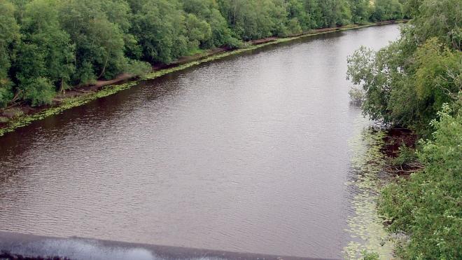 В Ленобласти в реке утонул 15-летний воспитанник детдома
