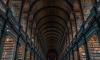 В Петербурге реконструируют библиотеку РАН и расширят книгохранилище