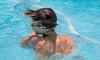 Тренер по водному поло в Петербурге собрал с родителей 330 тысяч и не вернул