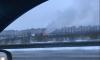 Частный дом и два автомобиля сгорели в Парголово