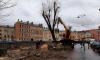 Снос деревьев на канале Грибоедова остановили после обращения активистов