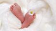 В петербургском роддоме №9 родилась первая за пять ...