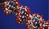 Верховный суд США вынес постановление против патентования ДНК человека