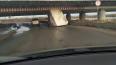 Петербургский Мост глупости схватил первую в году жертву