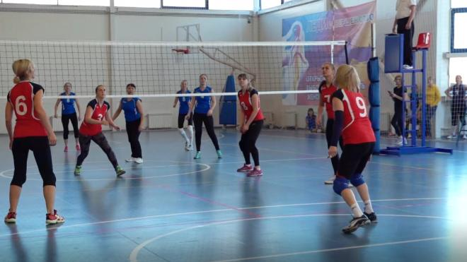 Петербургские спортивные организации смогут получить субсидию от города