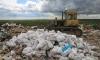 Сладкая гадость: в Петербурге уничтожили 4 тонны просроченной сахарной пудры из Бельгии