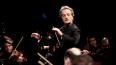Иранские музыканты дадут концерт в Петербурге в поддержку ...