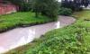 Река Красненькая в Петербурге окрасилась в молочный цвет: горожане возмущены