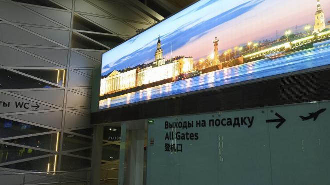 Северная столица возобновила регулярное авиасообщение с Женевой