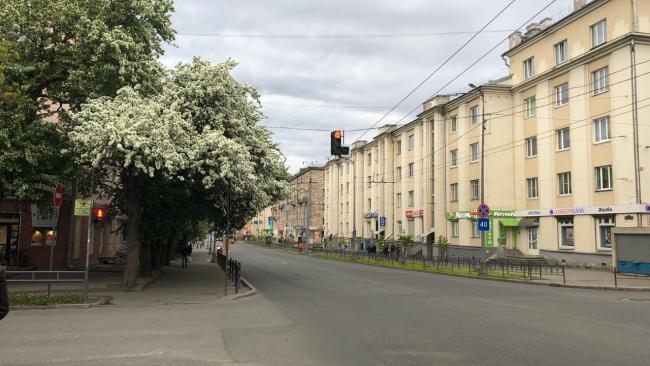 В столице Карелии на дистанционное обучение с 16 сентября переведено 110 школьников