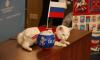 Эрмитажный кот Ахилл возглавил рейтинг лучших животных-предсказателей