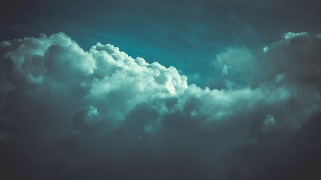 Туман накроет Ленобласть в последний вечер февраля