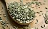В Петербурге обеззаразили полторы тонны индийских семян. Груз отправили в Москву