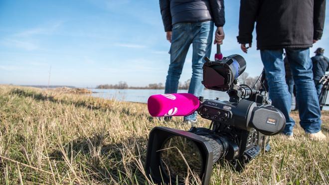Госдума приняла поправки, уточняющие требования к журналистам на митингах
