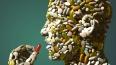 Ученые изобрели таблетку, способную стереть плохие ...