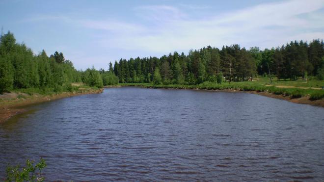 Эксперты предположили, когда в Охту и Оккервиль перестанут попадать загрязненные сточные воды