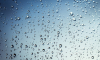 К концу недели Северную столицу остудят дожди