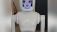 В Калининграде появился первый робот-официант