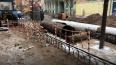 За год в Петербурге обновят 145 километров трубопроводов