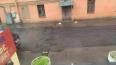 В Пушкине асфальт закатали поверх лежачего полицейского