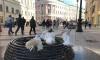 Индекс самоизоляции в Петербурге составил 2,4 балла