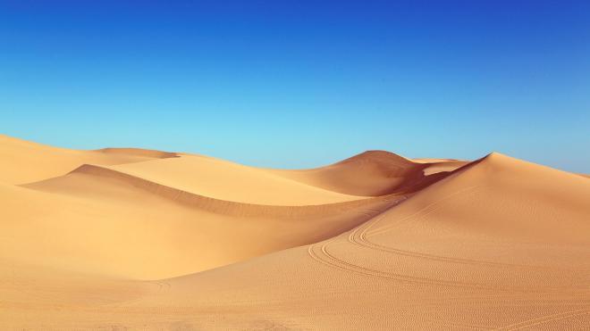 Облако пыли из Сахары движется в сторону Петербурга