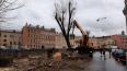 Петербуржцы не смогли отстоять деревья на набережной ...