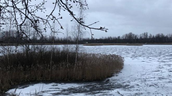 Спасатели сняли порядка 100 человек со льда на реке Глухарке в Петербурге