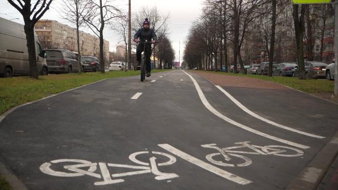 В 2021 году в Петербурге планируют проложить 11,5 км велодорожек