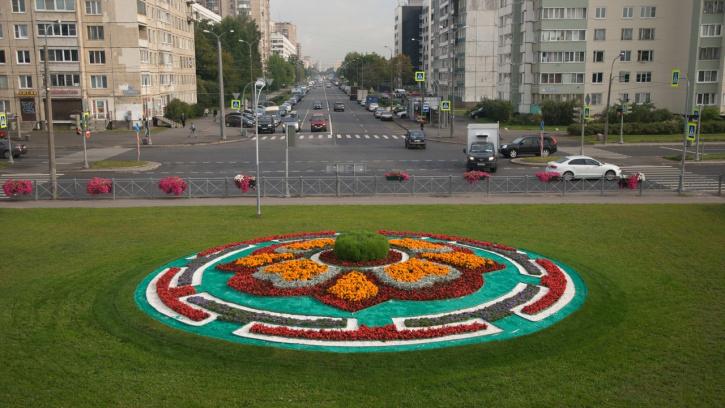 Муринский парк заиграл новыми красками после завершения работ по благоустройству