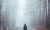 На Петербург надвигается туман