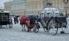 Спасатели предупреждают петербуржцев о гололедице и дожде
