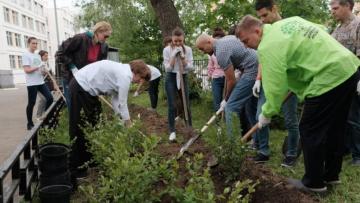 Администрация Петербурга опубликовала обращение к жителям об участии в Дне благоустройства