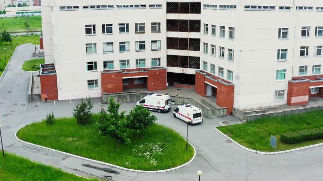 В детском саду Красносельского района у детей выявили сальмонеллез