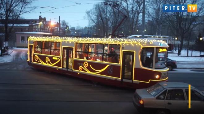 В Петербурге возобновил работу туристический трамвай