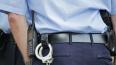 В Колпино полиция задержала мужчину с самодельным ...