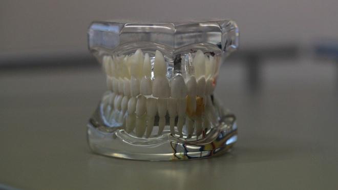 В Петербурге злоумышленник отобрал у прохожей зубные протезы