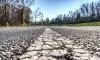 В 2019 году в Петербурге потратят 1,2 млрд рублей на капитальный ремонт дорог