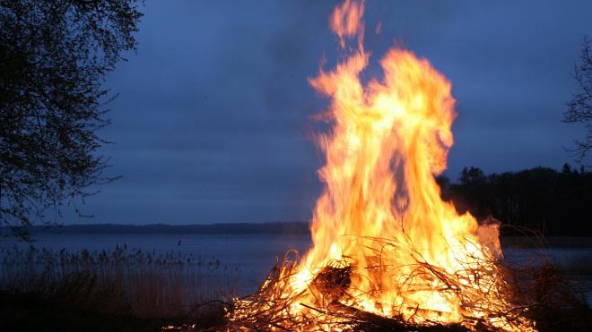 МЧС предупреждает жителей Ленобласти о начале пожароопасного сезона