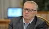 Жириновскому предложили начать отмену новогодних каникул с себя